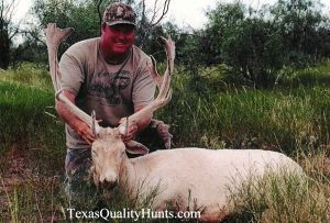 Texas-Quality-Hunts-Exotics-4