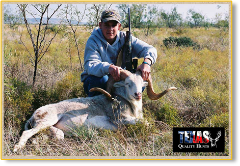 Texas Quality Hunts Exotics 1